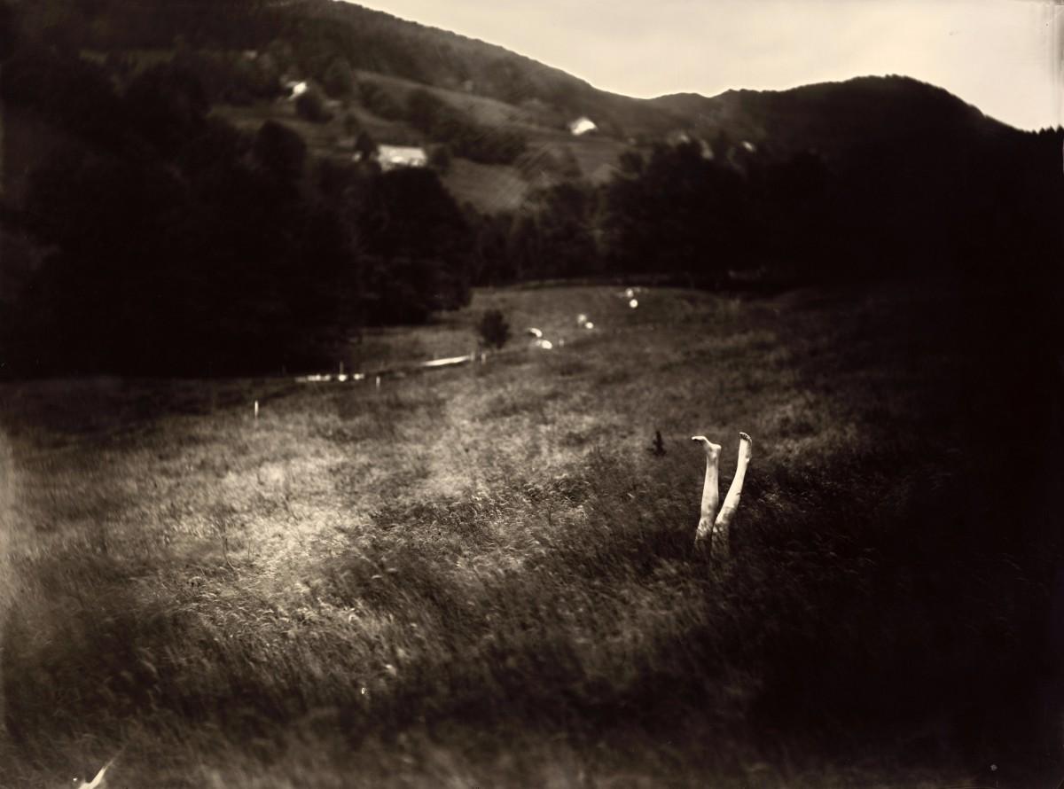 Éric Antoine photo Le Complexe de la Simplicité La Noyade